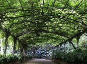 Jardin Botanique Concepción Malaga