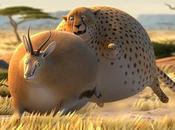 ROLLIN SAFARI univers parallèle animaux seraient ronds