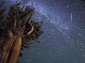 Perséides 2013 photos plus abondante pluie d'étoiles filantes