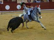 Bayonne corrida portugaise