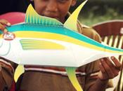 Seychelles Hook Line Fishermen
