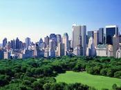 grandes villes n'ont jamais organisé d'été