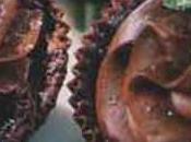 Mousse chocolat caissettes violettes feuilles mélisse cristallisées