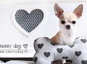 collection Hearts Louisdog pour chiens