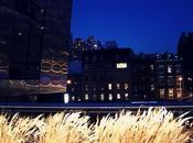 photos High Line Park.