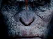 Planète singes l'affrontement Découvrez bande-annonce teaser