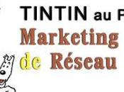 Tintin Pays Marketing Réseau