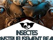 insectes Monstrueusement beaux