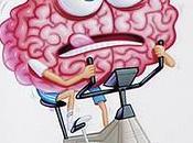 graines peuvent améliorer l'efficacité votre cerveau
