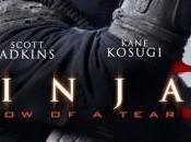 [Critique] NINJA SHADOW TEAR