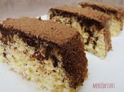 White cake noix coco pépites chocolat