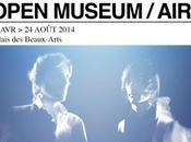 Open Museum groupe musée Beaux-arts Lille