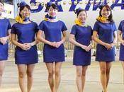 hôtesses l'air japonaises s'insurgent contre leur uniforme «sexy»