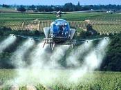 Bourgogne, hélicoptères pesticides sont retour