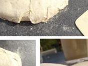Petits pains graines levain
