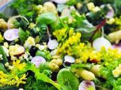 moment j'ai mesclun assez contrarié même très Salade tout couleurs menu bordel