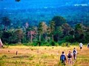 Comment voyager Cambodge autrement?