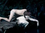 Gregor Rezzori, Cygne