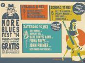 Shapeshifted 12th MORE BLUES FESTIVAL Egmontpark Zottegem, 2014