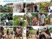 gagnants destination tahiti retour pays monoï