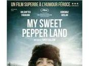 sweet pepper land