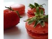 Macarons Confiture Fraises Coquelicot