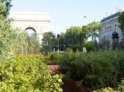ateliers pour développer l'agriculture ville