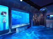 L'attaque requin digital l'exposition James Bond fait l'effet