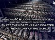 billions pour souffrir chaque année