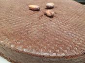 Gâteau chocourgette cacao