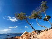 Porto-Vecchio Corse Sud, l'incomparable