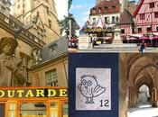 Pays moutarde Dijon! #Voyage
