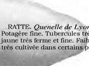 Depuis 1965, l'histoire Ratte Touquet
