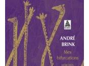 André Brink, pays