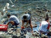 Comment marchés financiers multinationales accaparent aussi mers océans