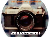 """Défi """"365 Photos quotidien"""" 38ème semaine #38/52"""