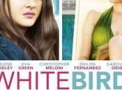 White Bird Voile Illusions
