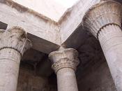 Salle vitrine côté seine symbolique palmier-dattier sein l'architecture égyptienne .....