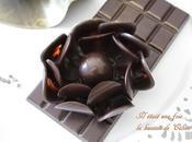 premier cours chez Lenôtre... Décor chocolat