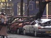 Tempêtes France décembre 1999