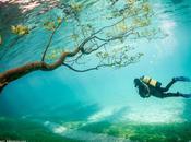 promenade l'extraordinaire Vert Autriche