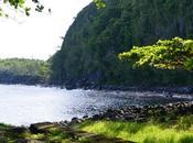 jolies choses#69 spécial voyage l'Ile Réunion