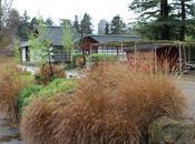 Deux jours Nantes jardin japonais l'Ile Versailles