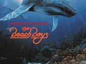 Beach Boys #8-Summer Paradise-1992