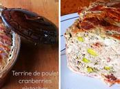 Terrine poulet cranberries pistaches