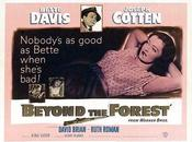 Garce Beyond Forest, King Vidor (1949)