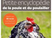poule encyclopédie