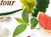 Recette autour d'un ingrédient Panna Cotta végétale lait chocolaté d'Ananas