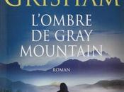 L?ombre Gray Mountain John Grisham