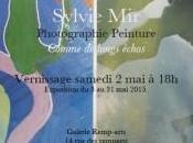 Exposition Photographie Peinture Comme longs échos Sylvie |Galerie REMP-ARTS |Durban-Corbières